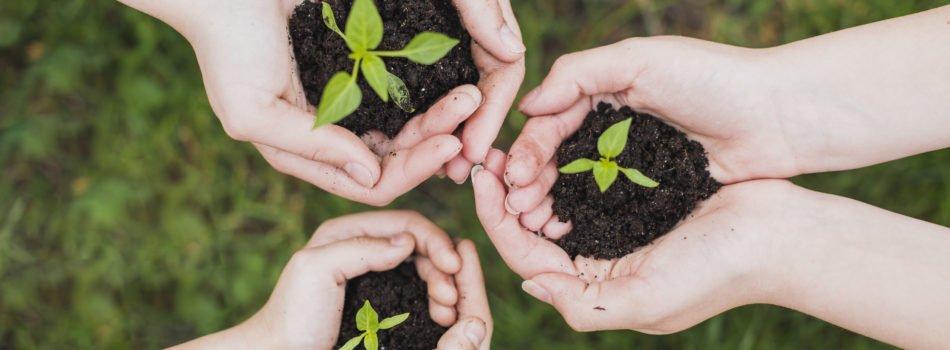 обучение 14001, обучение по 14001, курсы 14001, курс 14001, система экологического менеджмента iso 14001, курс iso 14001